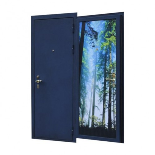 Дверь Дорман Эксклюзив